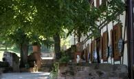 Lindengarten.jpg