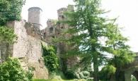 Sicht auf Burg Hanstein aus dem Burggarten